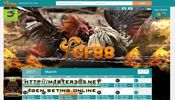 agen sabung ayam online Cf88vn situs judi sabung ayam adu ayam online laga ayam online bandar sabung ayam